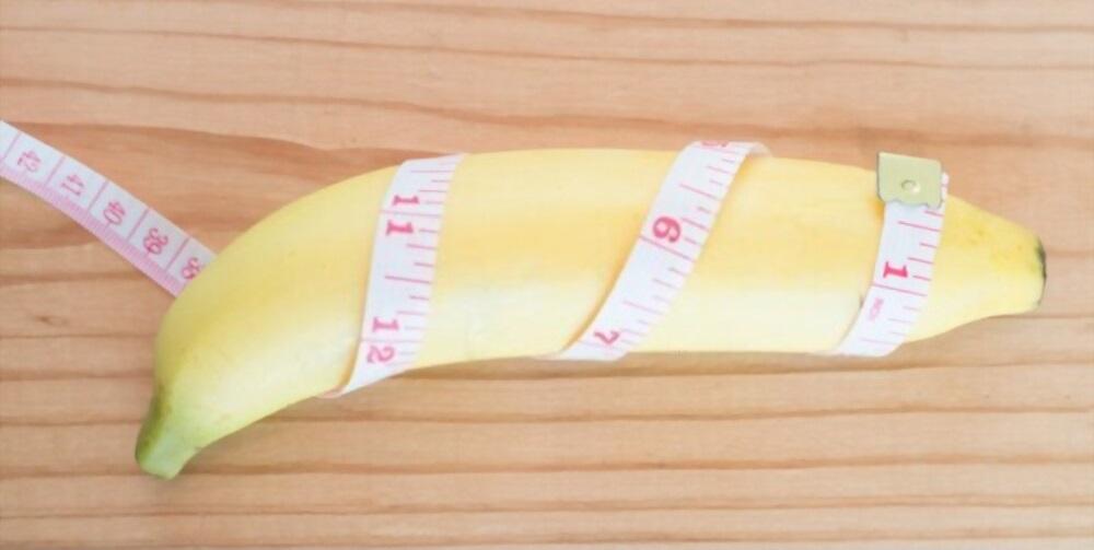 mesurer circonference penis